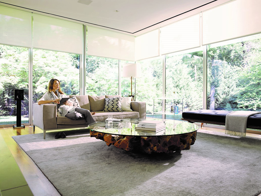 Personalize Your California Smart Home with Savant Systems